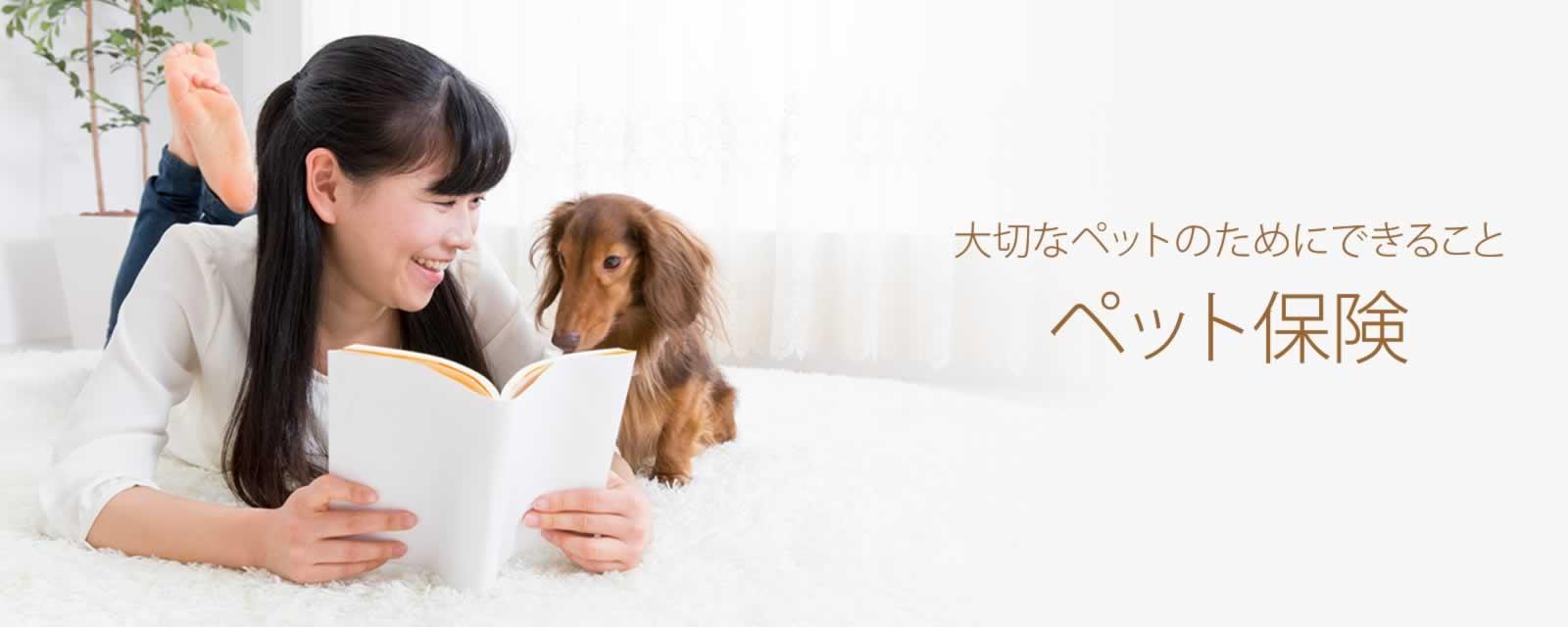 大切なペットのためにできることペット保険